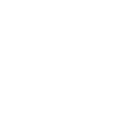Medalla de Bronce